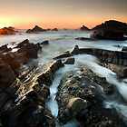 A Wrecker's Coast by Rob Dougall