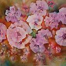 Carolina Beauty by Don Wright