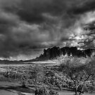 Approaching Storm by Michael  Petrizzo