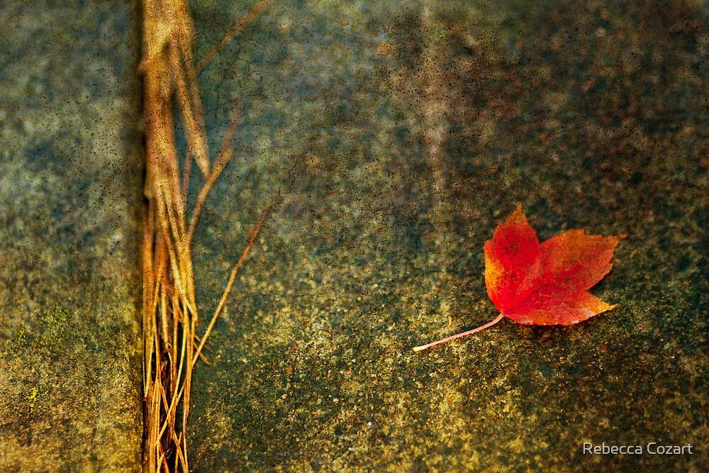 Leaf Zen S by Rebecca Cozart