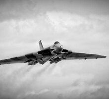 Delta Lady Approaching by Peter Farrington