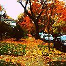 Autumn - Albany - NY by EllaUnread