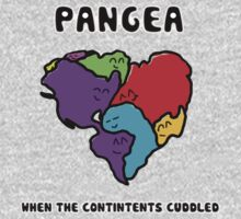 Pangea- the happy continent  Baby Tee