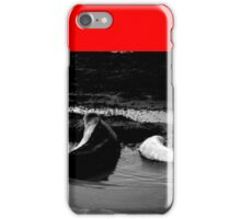 Mother and Baby Seals iPhone Case/Skin