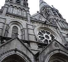 Saint Finbarre´s Cathedral by SamTheWizer
