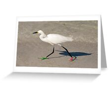 Snowy Egret - Red Green Morph Greeting Card