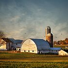 Old Farm by bettywiley
