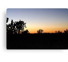 Cima Dome, Mojave National Preserve, California Canvas Print
