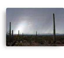 La Abra Plain, Arizona and Sonoita, Sonora, Mexico Canvas Print