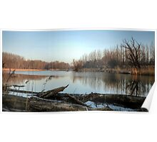Sunny Morning On The Danube River Poster