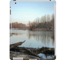Sunny Morning On The Danube River iPad Case/Skin