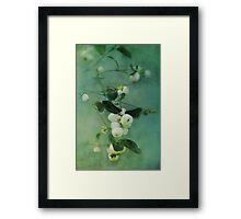 Snowberries Framed Print