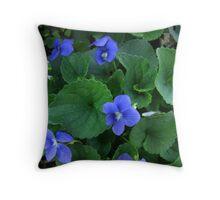 Viola adunca - Early Blue Violet Throw Pillow
