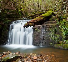 Strickland Falls, South Hobart by Chris Cobern