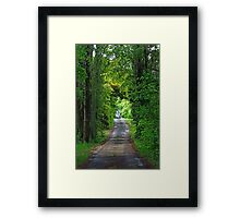 Driveway glade-Entrance to old winery,Orange NSW Framed Print
