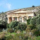Segesta Ruins by Lesliebc