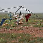 Hill's Hoist in the outback. by elphonline