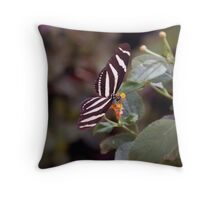 Heliconius Charithonius (Zebra Longwing) Butterfly Throw Pillow