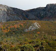 Cliffs at Crater Lake, Cradle Mountain,Tasmania, Australia. by kaysharp