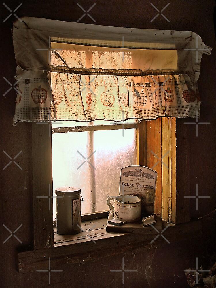 Window Light by CarolM