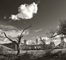 Ruins - Peake Hill Overland Telegraph Repeater Station by Jeff Catford