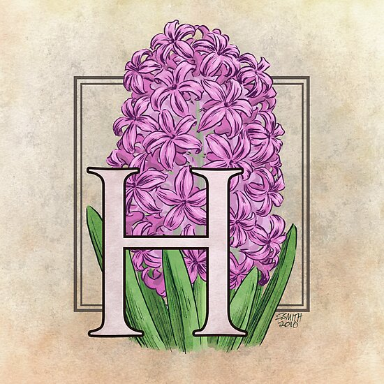 H is for Hyacinth by Stephanie Smith
