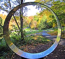 Hemlock Circle by shutterbug2010