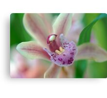 Orchid Mouth Metal Print