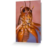 The Parktown Prawn Greeting Card