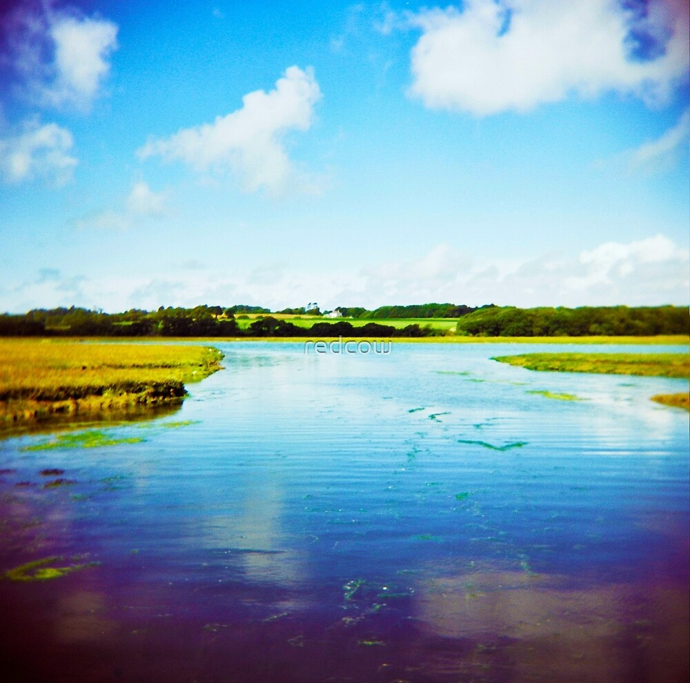 Holga river by redcow