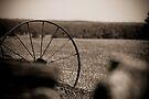 In a Farmer's Field by Vince Russell