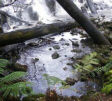 swirling pool at base of Dip Falls by gaylene