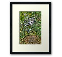 Autumn Japanese Gardens Framed Print
