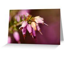 Floral Bells Greeting Card
