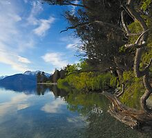 Lake Wakatipu  01 New Zealand by Barry Culling