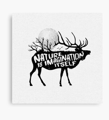 Nature is imagination itself Canvas Print