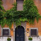 Roaming Around Rome by ImagesbyDi