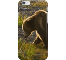 Grizzly Bear-Signed   #4571 iPhone Case/Skin