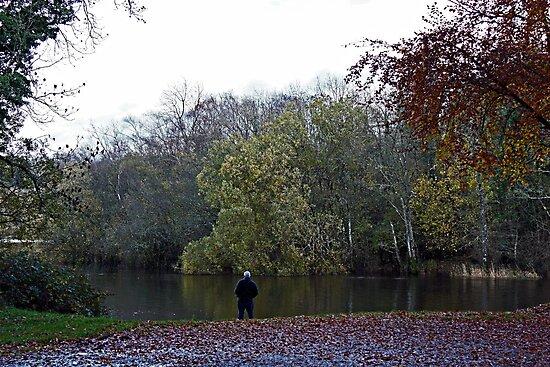 Wishing I was Fishing by Julesrules