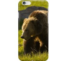 Grizzly Bear-Signed   #4545 iPhone Case/Skin