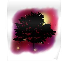 Trees Shadow Against the Night Sky Poster
