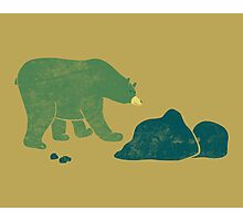 Bear Walks Photographic Print