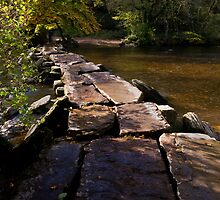 Autumn Collection - Tarr Steps, Exmoor. by Lorraine Parramore