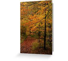Autumn Collection -  Woodland Walk 4 Greeting Card