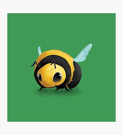 Little Bee Photographic Print