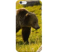 Grizzly Bear-Signed-#4477 iPhone Case/Skin