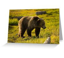 Grizzly Bear-Signed-#4477 Greeting Card