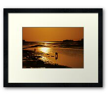 "before fishing they do ""worming"" Framed Print"