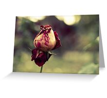 Endless Beauty Greeting Card