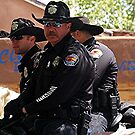 Albuquerque's Finest by Loree McComb